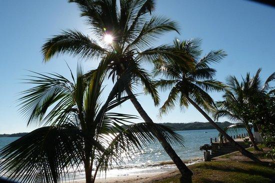 Corail Noir : Panorama dalla spiaggia