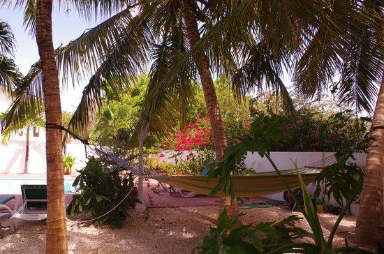 B&B Sombre di Kabana : Garten