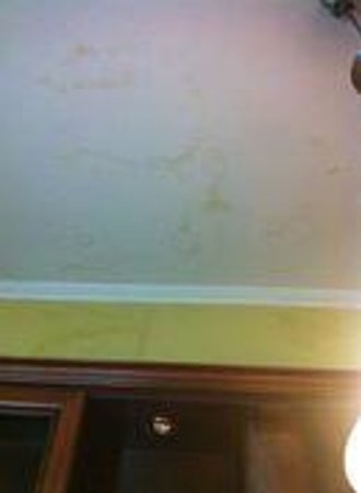 AS Apartments: Stains in the ceiling