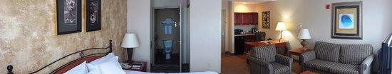 Hilton Garden Inn Phoenix Airport: Room a