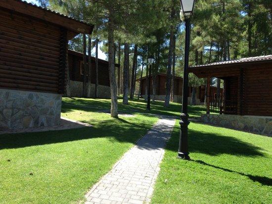 Camping Caravaning Cuenca: Cabañas