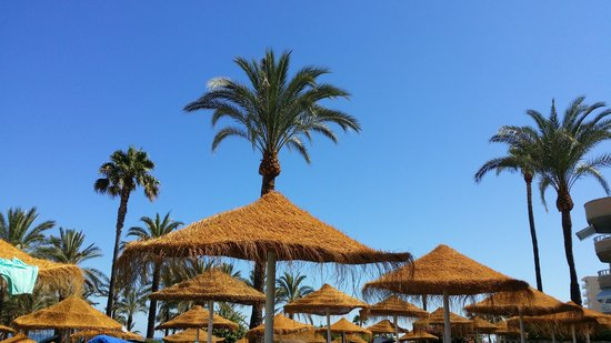 MedPlaya Hotel Pez Espada : view from sun lounger