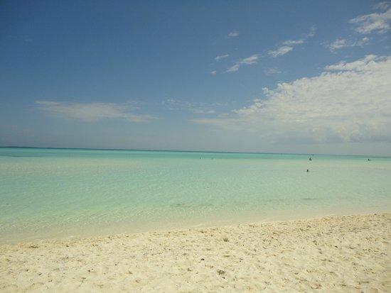 Sol Cayo Guillermo: Playa