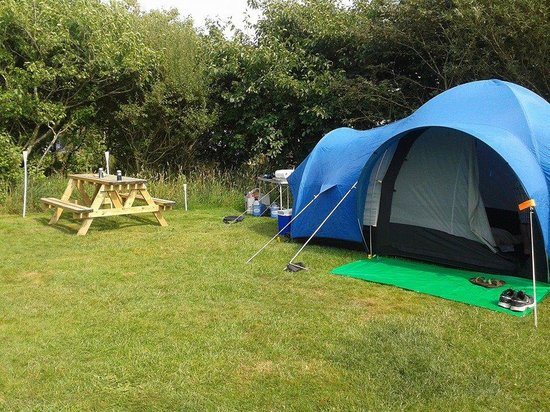 Warcombe Farm Camping Park: Our pitch