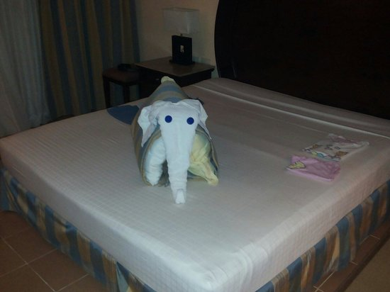 Stella Di Mare Beach Resort & Spa Makadi Bay: In camera ogni mattina