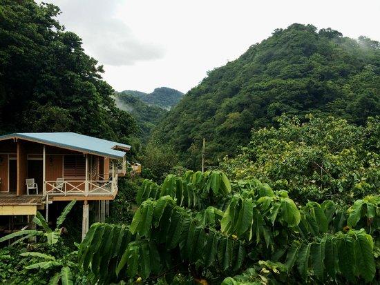 Casa Grande Mountain Retreat : Lush Mountain Retreat