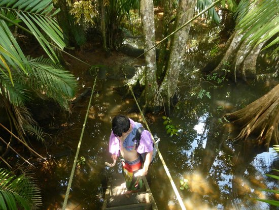 Rio Drake Farm: entorno