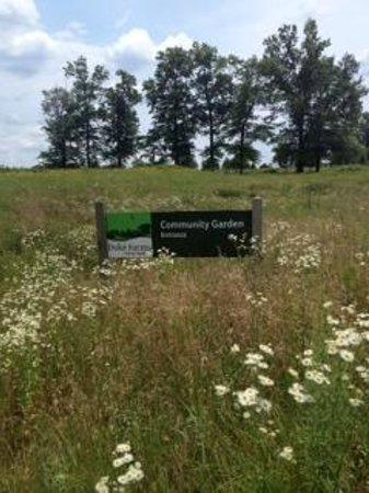 Duke Farms: Área da horta comunitária