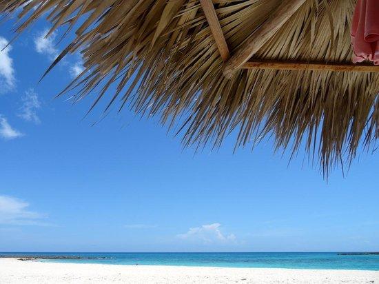Melia Buenavista: Una delle tre spiagge come vista da sotto l'ombrellone