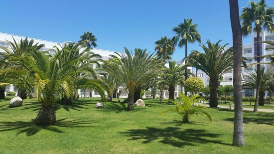 ClubHotel Riu Gran Canaria: Garden View