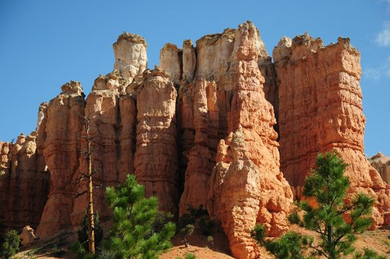 Bryce Canyon Livery Bed and Breakfast : 5 minutes away
