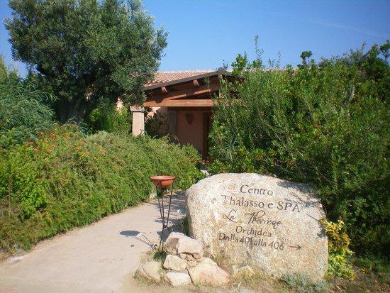 Resort Valle Dell'Erica Thalasso & Spa: Ingresso del centro SPA