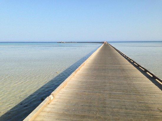 Sheraton Soma Bay Resort: The peer to the house reefs
