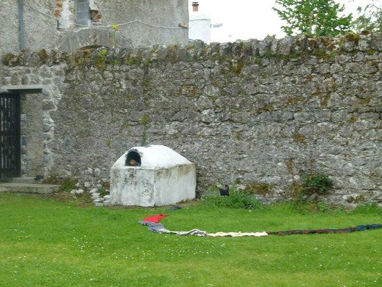 Galway Glamping: walled garden