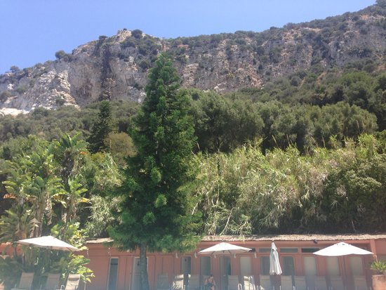 Rock Hotel Gibraltar: View from the pool bar