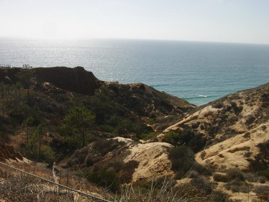 Torrey Pines State Natural Reserve: View