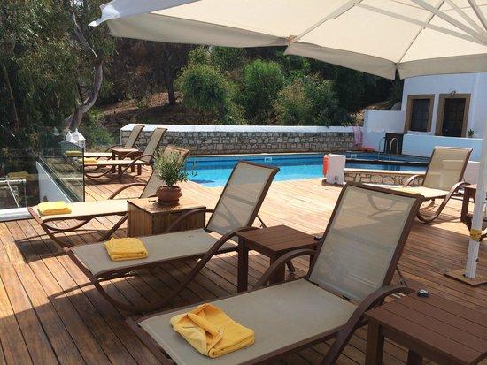 Petra Hotel & Suites : Poolside