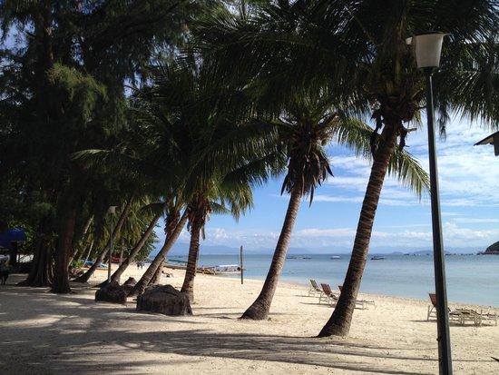 Coral View Island Resort: spiaggia