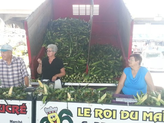 Marché Jean-Talon (Jean-Talon Market) : corn