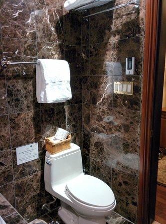 Chateau St-Marc : Toilet