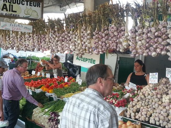 Marché Jean-Talon (Jean-Talon Market) : garlic