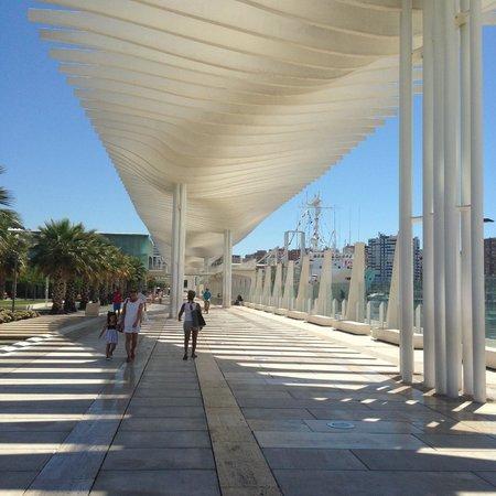 Salles Hotel Malaga Centro: Marina nearby