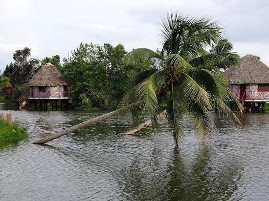 Horizontes Villa Guama: Due delle ville (capanna su palafitta) dell'hotel
