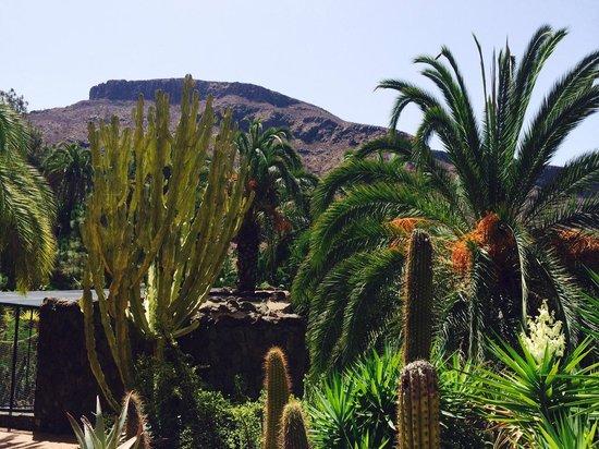 Palmitos Park: Beautiful location.