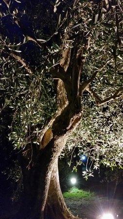 """La Parare: een beeld van de sfeervolle verlichting """"By night"""""""
