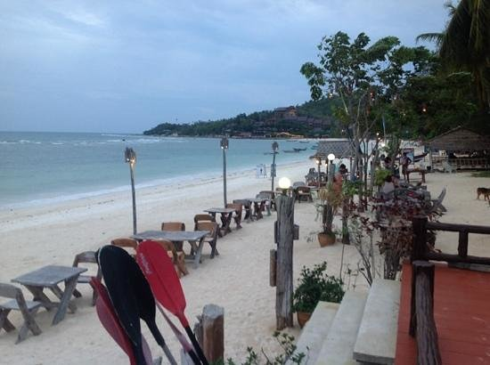 Sandy Bay Bungalows: restaurant at night