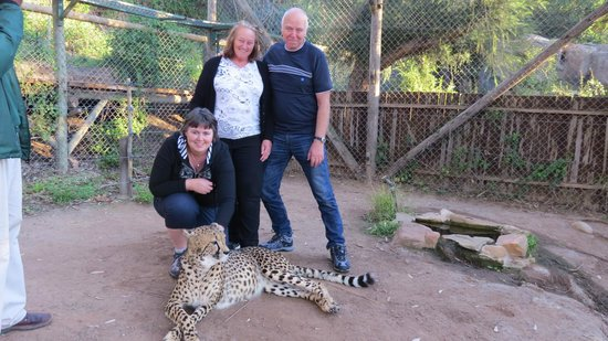 BokBus Garden Route Adventure Tours - Day Tours: Animal Sanctuary