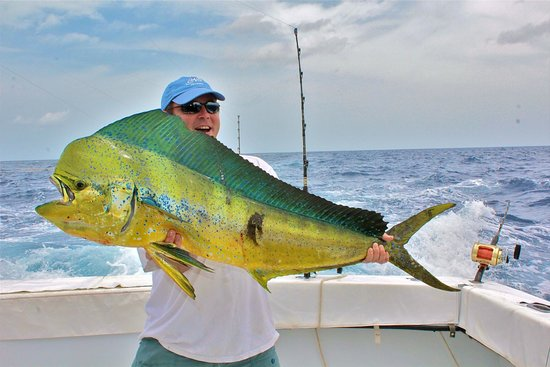 Back at the dock picture of capt mike 39 s deep sea for Good places to go fishing near me