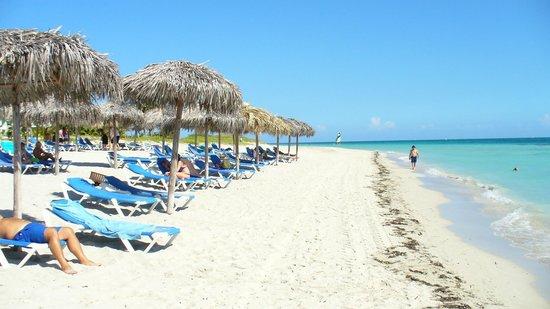 Blau Marina Varadero Resort: Plage paradisiaque