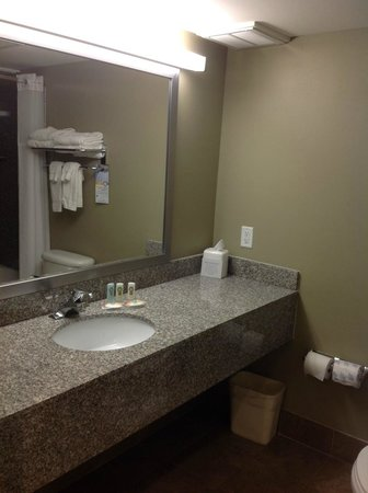 Quality Inn & Suites Near Fairgrounds Ybor City: Three piece bath