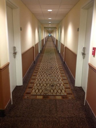 Quality Inn & Suites Near Fairgrounds Ybor City: Looooooooong Hallway