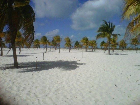 Sol Cayo Largo: Playa Sirenas