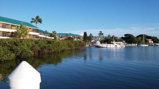 Tween Waters Inn Island Resort & Spa: looking north