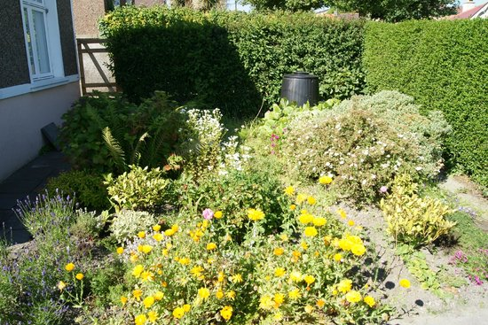 Cuasnog B&B/Self Catering Apartment: Garden