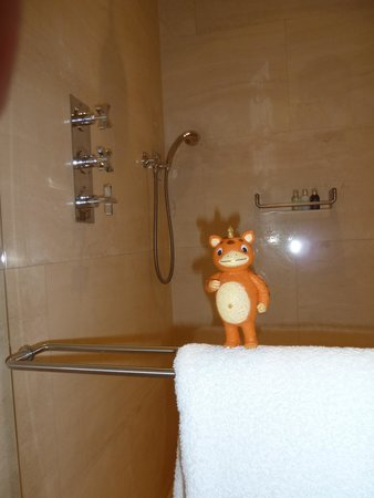 The Bryant Park Hotel: Shower