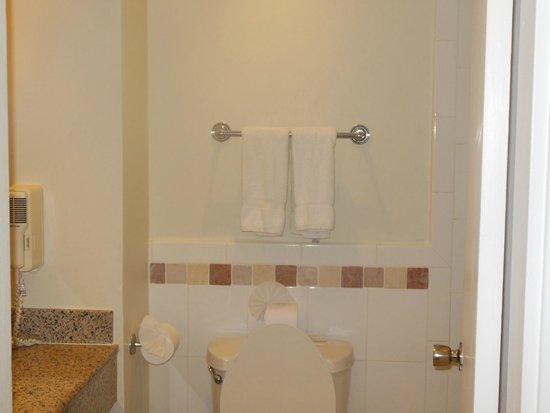 Almond Beach Resort: Bathroom