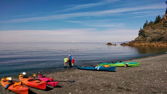 True North Kayak Adventures: Lunch time stop