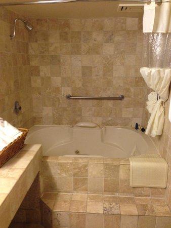 Laguna Brisas Hotel: Bathroom