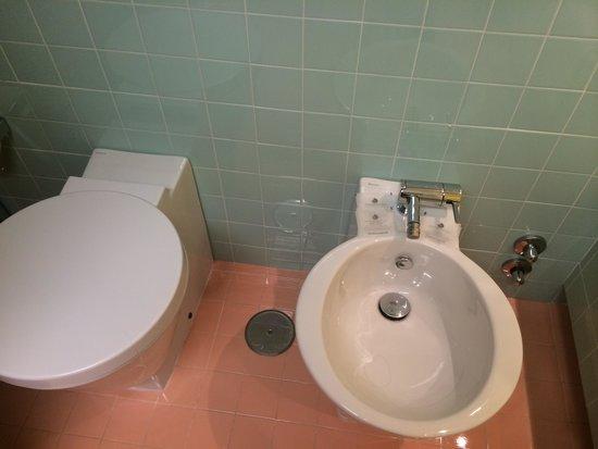 Hotel Albani Roma: Example of toliet