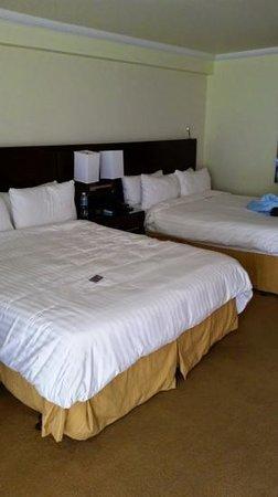 Aruba Marriott Resort & Stellaris Casino: Two Queen Bedroom