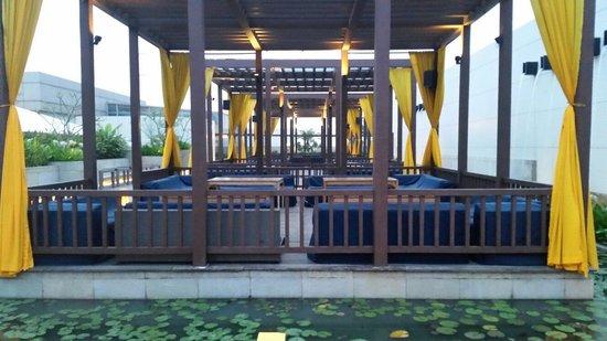 Swissotel Kolkata: Splash