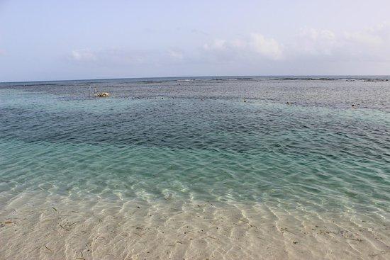 Grand Bahia Principe Jamaica: beach at morning