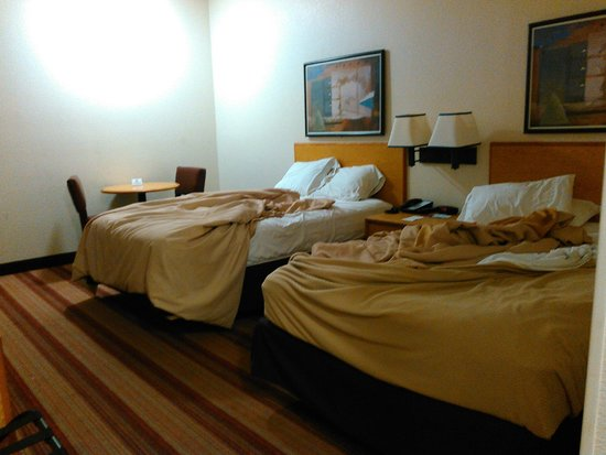 Red Roof PLUS+ Tempe - Phoenix Airport: Beds