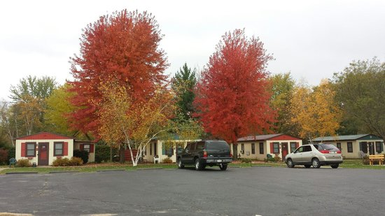 Cozy Corner Cottages: Vibrant display of fall leaves