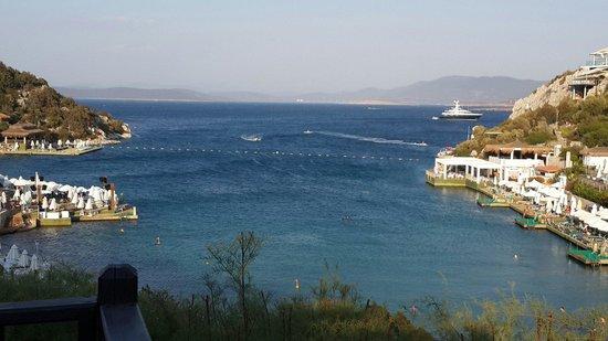 Hilton Bodrum Turkbuku Resort & Spa: Koyun Manzarası