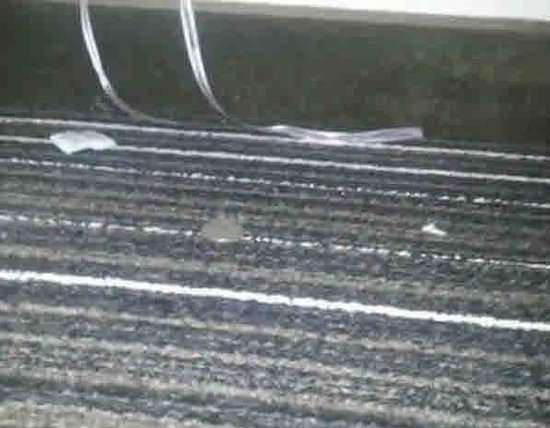 Wyndham Houston West Energy Corridor: Carpet filth